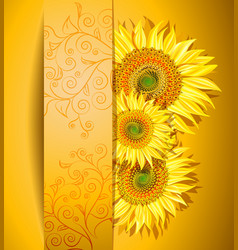 Orange Sunflower Background vector image