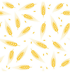 Seamless wheat barley or rye background pattern vector
