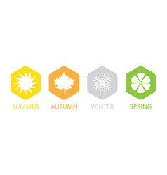Set of four seasons icons vector