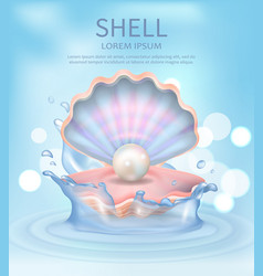 shell elegant poster with text vector image