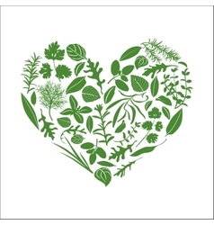 Floral heart made of herbs vector image