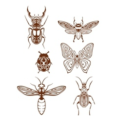 Insects tattoos in tribal style vector
