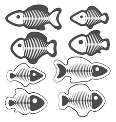 set fish with skeletons vector image
