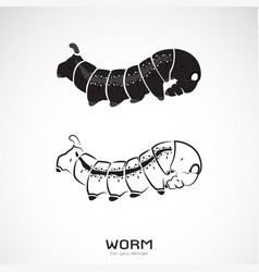 Two caterpillar on white background icon worm vector