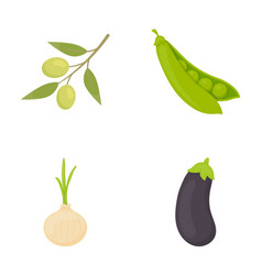 Olives on a branch peas onions eggplant vector