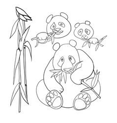 cute panda characters and bamboo coloring book vector image
