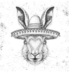 Hipster animal rabbit wearing a sombrero hat vector