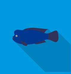 stearocranus fish icon flat singe aquarium fish vector image