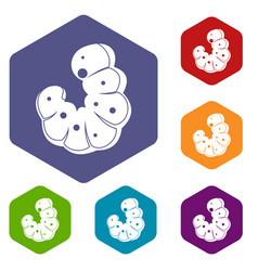 Worm icons set hexagon vector