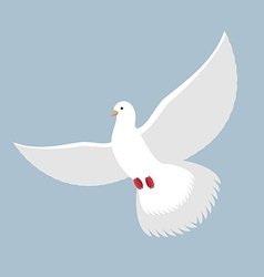 White Dove Flying White pigeon Bird with wings vector image