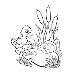 Little cute duckling tries to enter to the pond vector