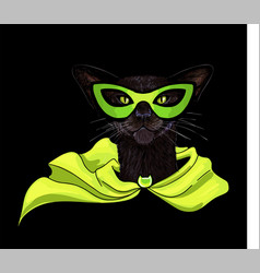 black oriental cat in superhero mask and cloak vector image