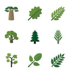 flat icon bio set of tree jungle acacia leaf and vector image