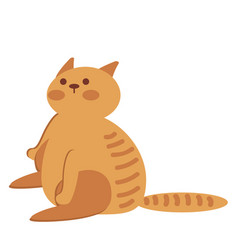 ginger cat isolated over white background animal vector image