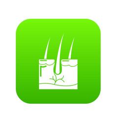 Hair skin icon green vector