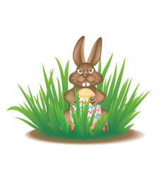 real easter bunny in the grass vector image