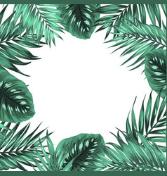 Tropical jungle palm monstera green leaves frame vector
