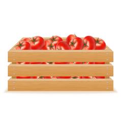 Wooden box of tomato vector