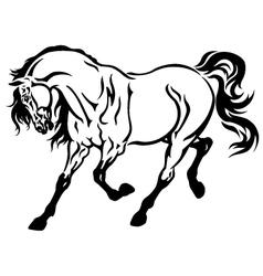 running horse tattoo vector image
