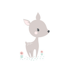 cartoon deer card vector image