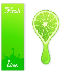 Lime crush juice vector