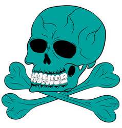 skull and bones cartoon vector image
