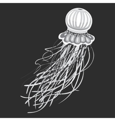 Spineless stripping blubber or jellies vector