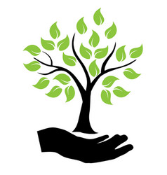 tree hands vector image