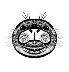 Zentangle stylized seal Sketch for tattoo or t vector image