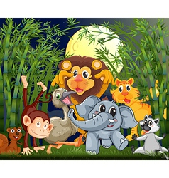 A rainforest with animals strolling in the middle vector image