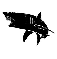 Angry silhouette shark icon vector