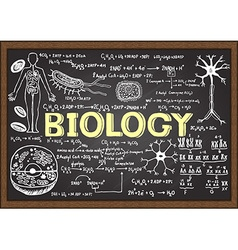 Biology icon set on chalkboard vector