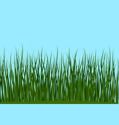 Grass and blue sky seamless vector