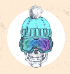 hand drawing hipster skull in winter hat vector image