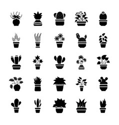 Houseplants glyph icon set vector