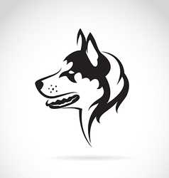 Image of a dog siberian husky vector