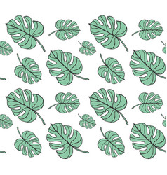 seamless pattern monstera palm leaves vector image