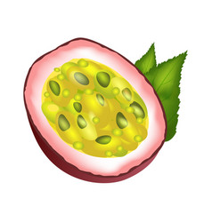 juicy passion fruit cut part with green leaves vector image