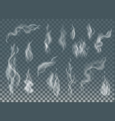 realistic cigarette smoke waves or steam on vector image