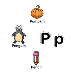 Alphabet letter p-pumpkin penguin pencil vector