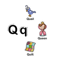 alphabet letter q-quail queen quilt vector image