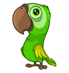cute cartoon green parrot with a large beak vector image
