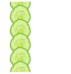 decorative border of cucumber slice vector image
