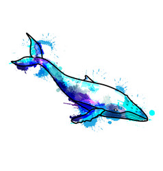 hampback whale made of colrful splashes vector image