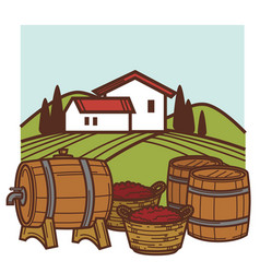 Winery and vineyard wine barrels and grape vector