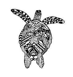 Zentangle stylized turtle Sketch for tattoo or t vector image vector image