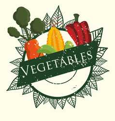 Vegetables fresh agriculture product poster vector