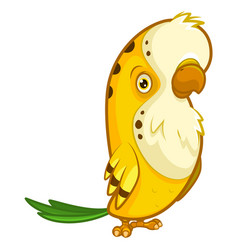 funny yellow parrot with a small beak vector image
