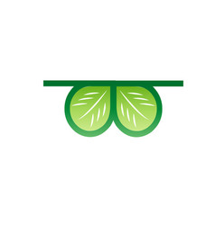 Icon of glasses with leaves vector