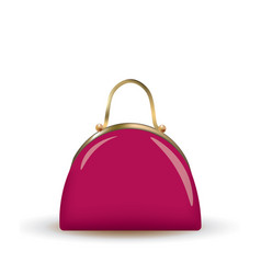 pink clutch bag vector image